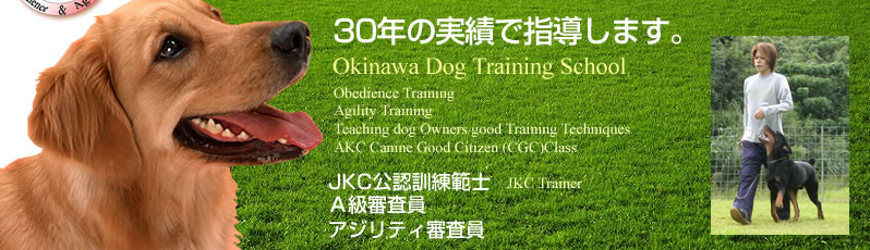 30年の実績で指導します。Okinawa Dog Training School(沖縄ドッグトレーニングスクール),Obedience Training,Agility Training,Teaching dog Owners good Training Techniques,AKC Canine Good Citizen (CGC)Class,JKC公認訓練範士,JKC Trainer,A級審査員,アジリティ審査員